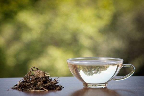 خواص چای سفید و تأثیر چای سفید بر لاغری
