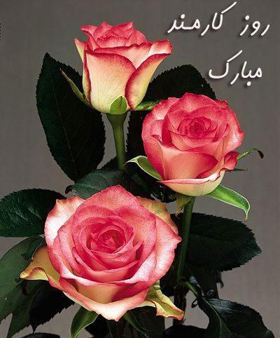 عکس نوشته پروفایل تبریک روز کارمند به همراه اس ام اس و متن تبریک روز کارمند