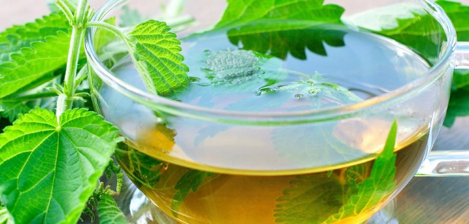 خواص دمنوش گزنه، طرز تهیه چای گزنه