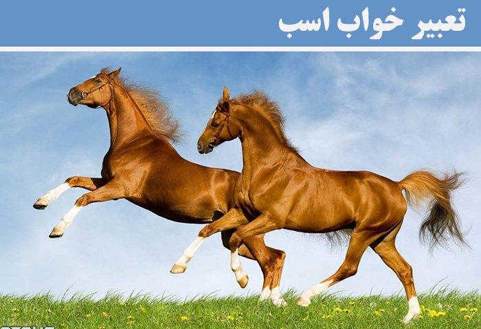 تعبیر خواب اسب؛ تعبیر خواب سوار بر اسب شدن