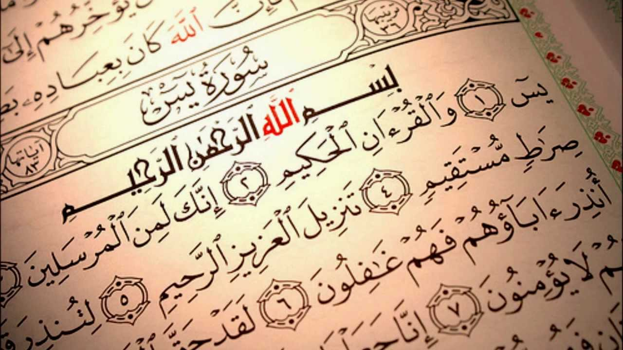 متن سوره یس به همراه ترجمه فارسی؛ فضیلت خواندن سوره یس
