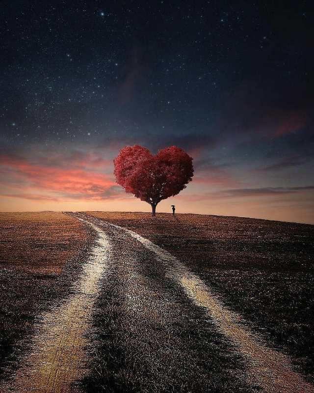 متن شب و تنهایی عاشقانه
