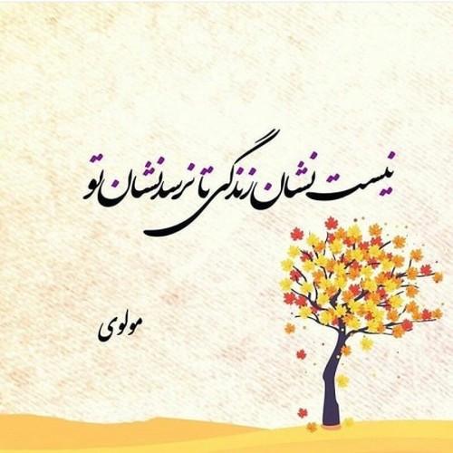 اشعار تک بیتی حافظ