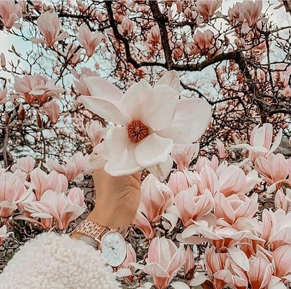 عکس نوشته بهاری عاشقانه