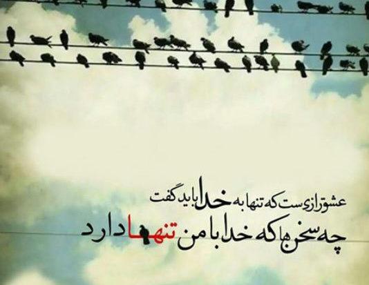 احمد رضایی پایدار No Twitter