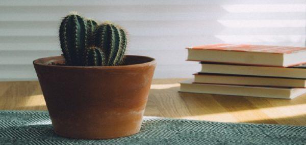 کتاب هایی که با آنها معنای زندگی را پیدا خواهید کرد