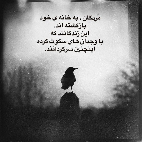 شعر سکوت