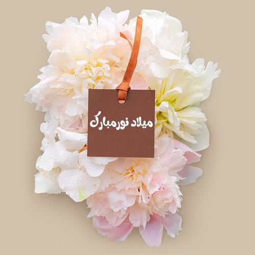 عکس پروفایل ولادت امام حسن مجتبی (ع)