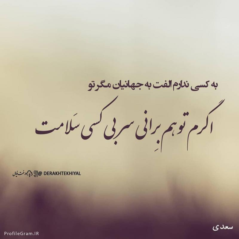 شعر سعدی دکلمه اهورا ابراهیمی 8