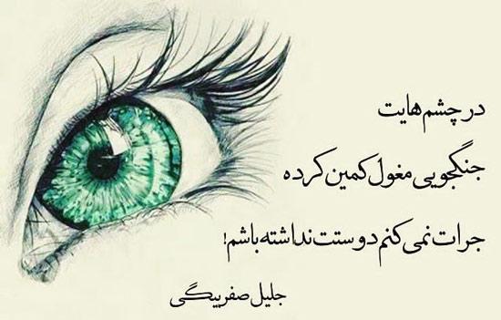 شعر چشم