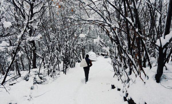 عکس از طبیعت زمستانی