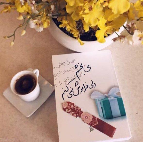 متن برای بخشش همسر