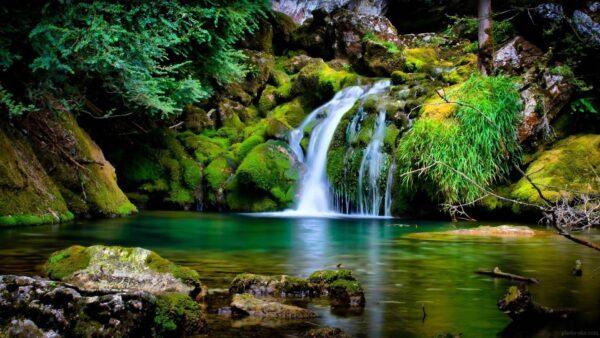 انشا با موضوع طبیعت