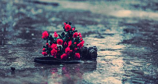مجموعه متن های زیبای انگلیسی در مورد باران با ترجمه فارسی