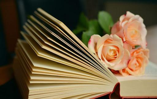 انشا با موضوع کتاب + 5 انشا ادبی کوتاه و بلند در مورد کتاب