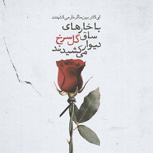 متن زیبا در مورد گل